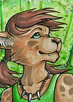 ACEO Tracey